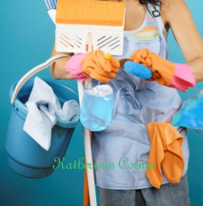 Cleaning Product Reviews