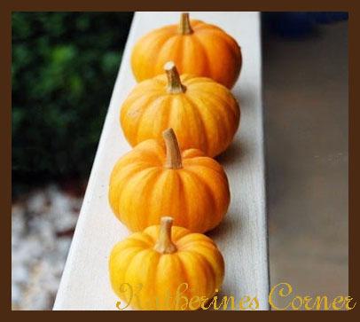 Wordless Wednesday Porch Rail Pumpkins
