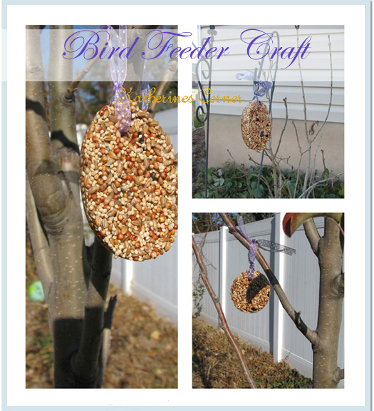 Bird Seed Craft