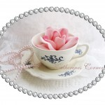 pink rose in teacup