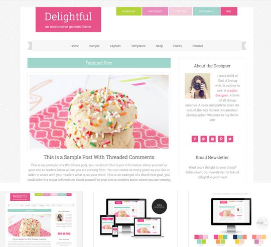 delightful wordpress themes