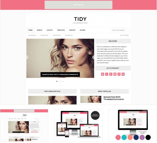 tidy blog theme
