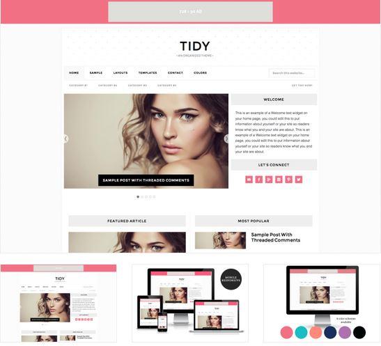 tidy blog theme