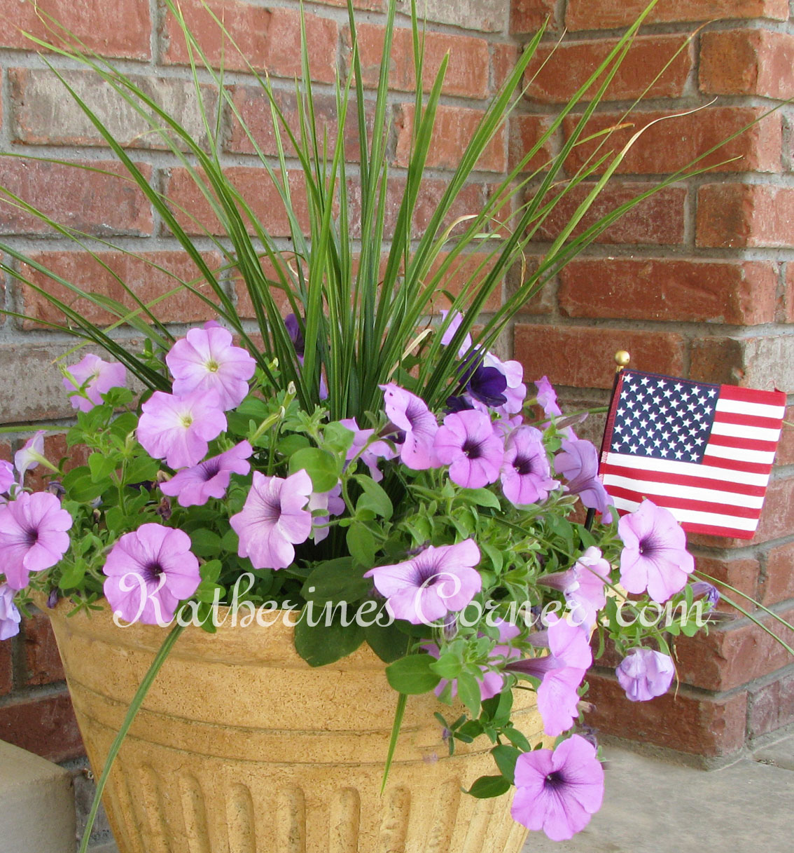 Wordless Wednesday Fourth of July