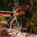 bicycle with geranium basket