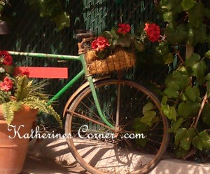 bicycle with geranium basket