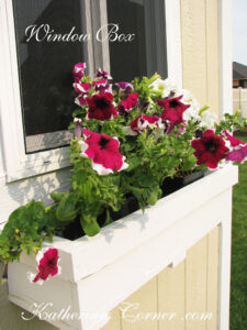 window box katherines corner