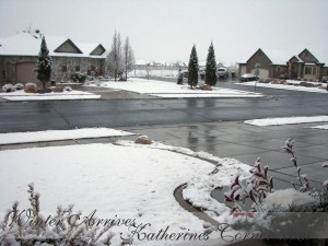 winter arrives katherines corner