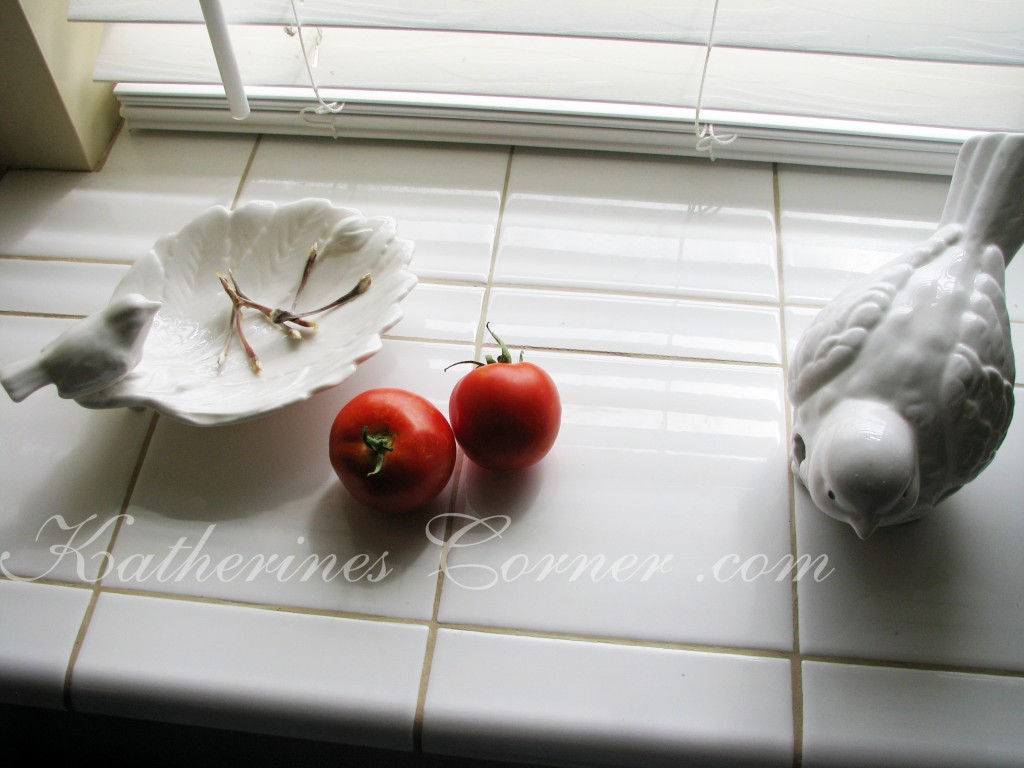 tomatoes ripen on the windowsill