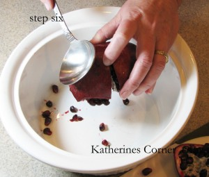 step six how to seed a pomegranate