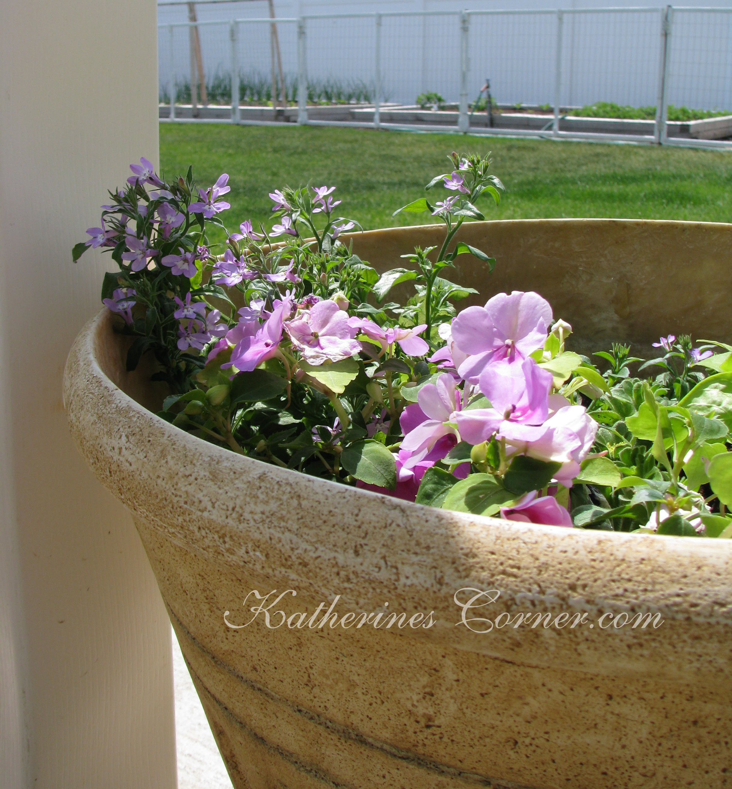Quiet Corner Container Gardening Ideas: Container Gardening Basics