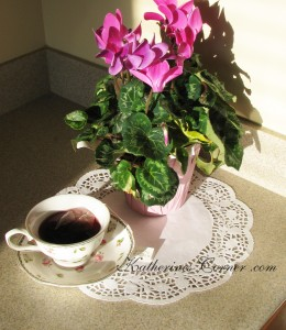 cyclamen flower thursday favorite things