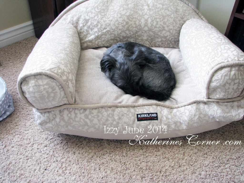 sofa pet bed