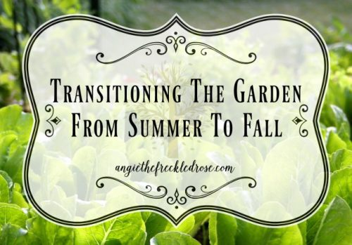 http://www.angiethefreckledrose.com/transitioning-the-garden-from-summer-to-fall/