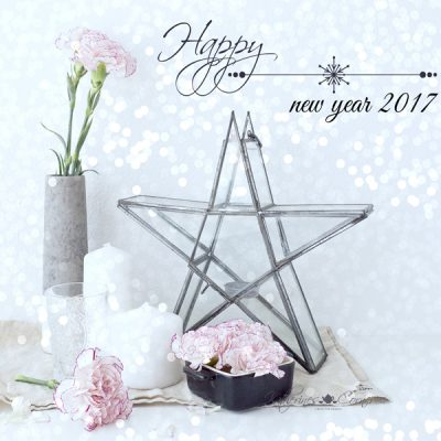 happy new year 2017 from Katherine corner