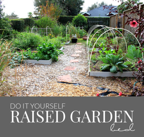 diy raised bed gardening