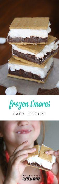 frozen smores ice cream sandwich
